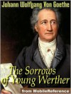 The Sorrows of Young Werther - Johann Wolfgang von Goethe, R. Boylan