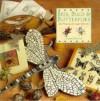 Bees Bugs Butterflies - Judith Simons