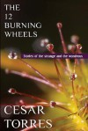 The 12 Burning Wheels - Cesar Torres