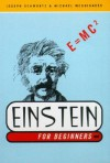 Einstein for Beginners - Joseph Schwartz, Michael McGuinness