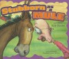 Stubborn as a Mule and Other Silly Similes - Nancy Loewen, Adam Watkins