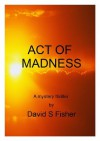 Act of Madness - David Fisher