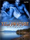 Yellowstone Wild - India Masters