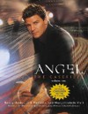 Angel: the Casefiles, Volume 1 - Nancy Holder, Jeff Mariotte