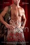 Slow Burn - Anne Marsh