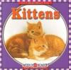 Kittens - JoAnn Early Macken