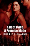 A Debt Owed—A Promise Made - Destiny Blaine