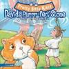 Pretty Bitty Kitty and David's Purrr-Fect Stone - Christine Harder Tangvald, Rhondi Deboer