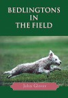 Bedlingtons In The Field - John Glover