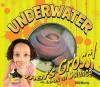 Underwater - Julie Murray