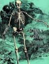 Albinus on Anatomy - Robert Beverly Hale, Terence Coyle