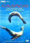 Galapagos (BBC) - David Clark