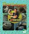 Into Wild Galapagos - Elaine Pascoe