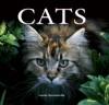 Cats - Louisa Somerville