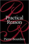 Practical Reason: On the Theory of Action - Pierre Bourdieu, Randal Johnson, Randall Johnson