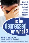 Is He Depressed or What?: What to Do When the Man You Love Is Irritable, Moody, and Withdrawn - David B. Wexler