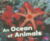 An Ocean of Animals - Janine Scott