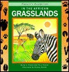 In the African Grasslands (Nature's Footprints) - Q.L. Pearce