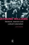 Raymond Williams (Critics of the Twentieth Century (Routledge)) - John Higgins