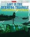 Lost in the Bermuda Triangle and Other Mysteries - Anita Ganeri, David West