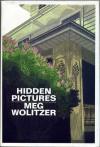 Hidden Pictures - Meg Wolitzer