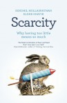 Scarcity: Why Having Too Little Means So Much - Sendhil Mullainathan
