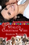 Halo's Christmas Wish (Dreams Come True Series) - Sharon Kleve