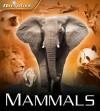 Mammals (Navigators) - David Burnie