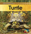 Turtle - Ron Fridell, Patricia Walsh