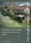 Archaeology of the Newland: Excavations in King's Lynn, Norfolk - Richard Brown, Alan Hardy