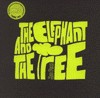 The Elephant and the Tree - Jin Pyn Lee