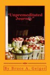 Unpremeditated Journey: Hoover/FDR to Bush/Obama 83 Years in 250 Pages - Bruce A Geiger