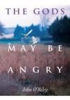 The Gods May Be Angry - John O'Riley