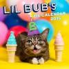 Lil Bub 2015 Wall Calendar - Lil Bub