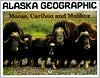 Moose, Caribou and Musk Ox - Penny Rennick
