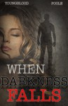 When Darkness Falls: A Romantic Suspense Novel - Jennifer Youngblood, Sandra Poole