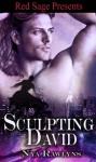 Sculpting David - Nya Rawlyns