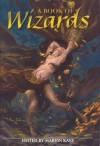 A Book of Wizards - Patricia A. McKillip, Marvin Kaye, Holly Phillips, Peter S. Beagle, Robert Krammes, Margaret Weis, Tanith Lee, Kim Newman