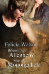 Where the Allegheny Meets the Monongahela - Felicia Watson, Jeff Gelder