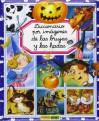 Brujas Y Hadas/ Witches and Fairies (Diccionario Por Imagenes) - Émilie Beaumont