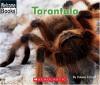 Tarantula (Welcome Books: Animals of the World) - Edana Eckart