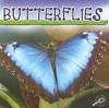 Butterflies - Jason Cooper