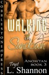 Walking at Sundown - L. Shannon