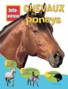 Chevaux Et Poneys - Honor Head