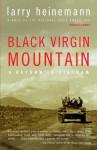 Black Virgin Mountain: A Return to Vietnam (Audio) - Larry Heinemann