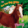 Pony (See how they grow) - Angela Royston, Gordon Clayton, Mary Ling