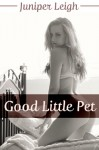 Good Little Pet: You Are Mine: BDSM Master Slave Erotica - Juniper Leigh