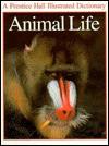 Animal Life - Martin Walters
