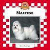 Maltese - Nancy Furstinger
