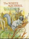 The White Squirrel - Jane Carruth, Saburo Yamada